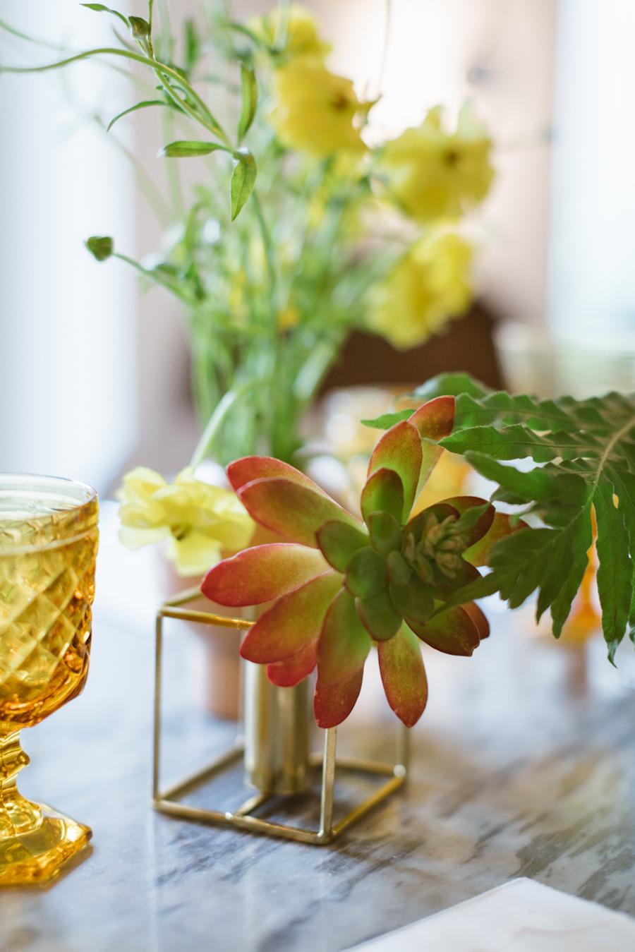 centrotavola con piante succulente