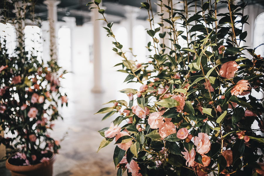 matrimonio industriale in primavera
