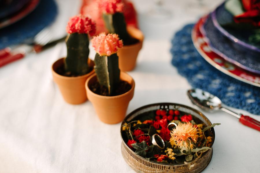 cactus centrotavola