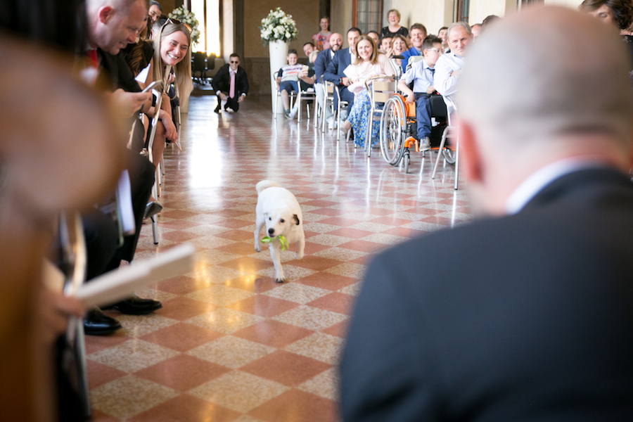 matrimonio botanico e dog-friendly