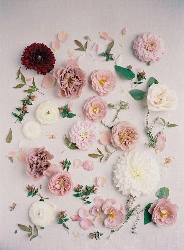 fiori rosa e malva